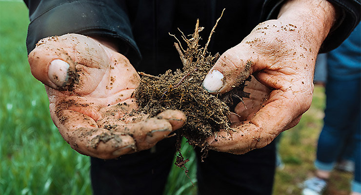 2nd annual soil health scholarship - hands